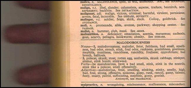 malodorousness1