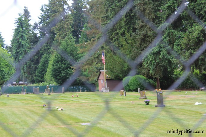 Cemetery thru fence pm