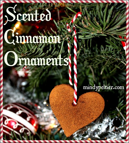 Scented Cinnamon Ornament pm 040