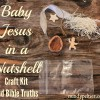 Baby Jesus in a Nutshell Craft Kit and bible Truths
