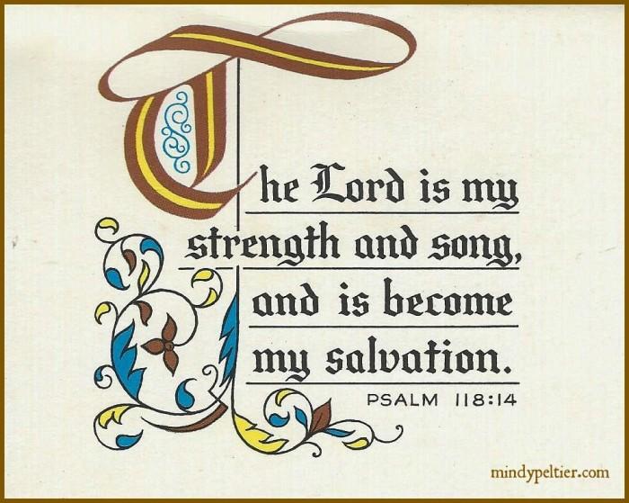 Psalm 118:14 @MindyJPeltier